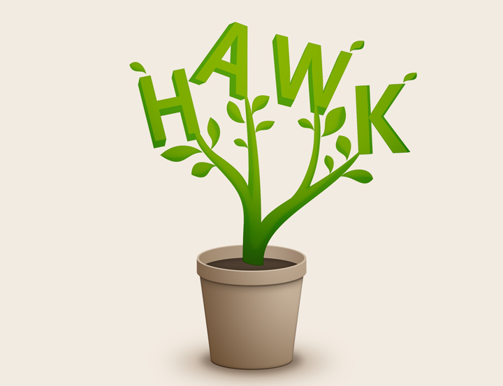 HAWK fliegt Logo-Entwurf - Blumentopf